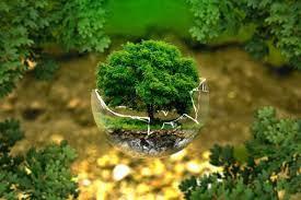 El IPCC advierte de que el capitalismo es insostenible